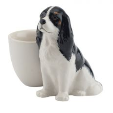 Dash egg cup