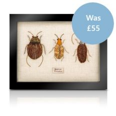 Embroidered felt taxidermy - framed trio of beetles