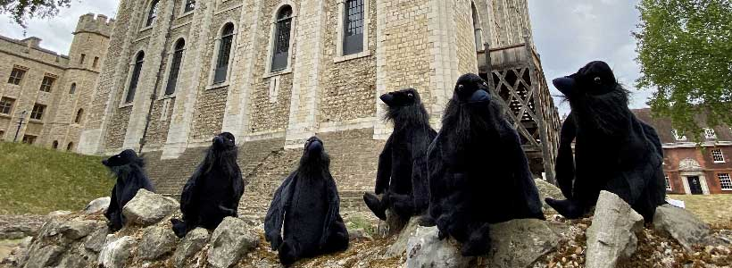 Raven soft toys at the Tower of London